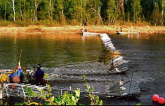 Heat Wave Hits Cook Inlet Salmon Streams