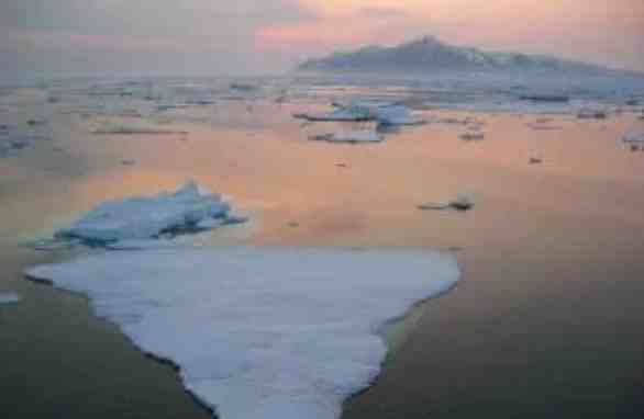 Record Low Level of Bering Sea Ice Causes Profound, Widespread Impacts