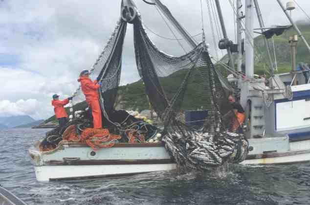 Exploring Women's Engagement in 30 Years of Alaska Fisheries