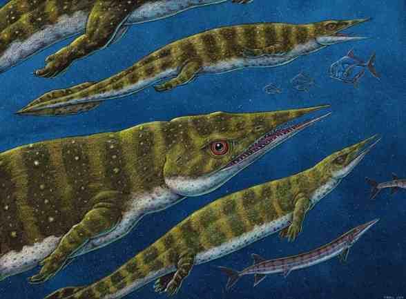 New Thalattosaur Species Discovered in Southeast Alaska