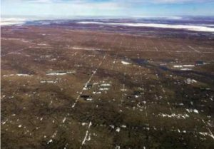 Photo by Matt Nolan An early spring view of tracks left by a 3D seismic survey conducted in winter 2017-2018. The spacing of the tracks in the photo is 200-by-400 meters, rather than the 200-by-200-meter grid proposed by SAExporation. The photo is not an example of the long-term damage found by researchers in other areas.