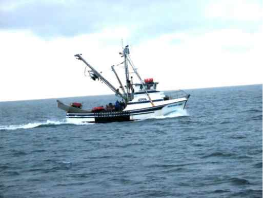 State of Alaska Opens Public Comment Period for 2018 Chignik Sockeye Salmon Fishery Disaster Fund Draft Distribution Plan