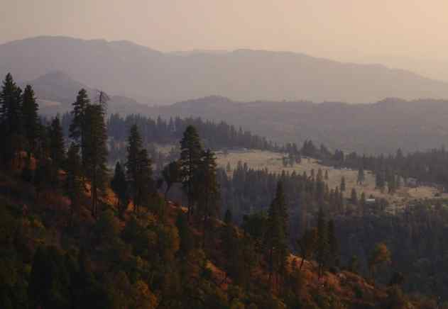 Trump Plan to Open National Forests to Oil and Gas Drilling Rebuked as Attack on Biodiversity and Indigenous Lands