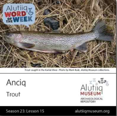 Trout-Alutiiq Word of the Week-October 4th