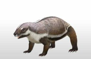 Adalatherium is an important piece in a very large puzzle on early mammalian evolution in the southern hemisphere, one in which most of the other pieces are still missing. Credit: Andrey Atuchin