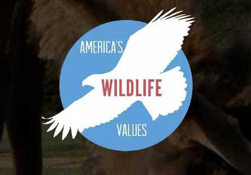 America's Wildlife Values logo