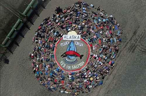 Salmonfest Aerial Art