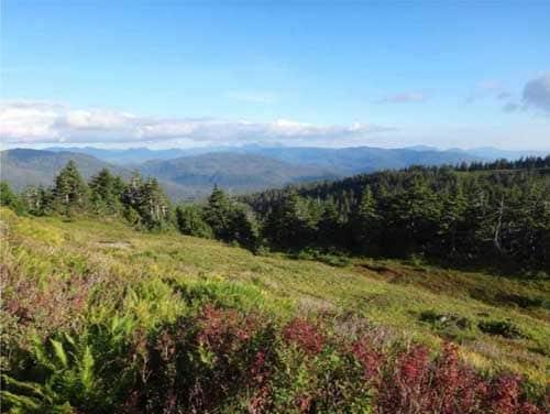 Prince of Wales landscape. Image-USDA