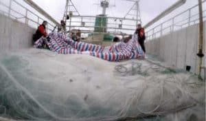 USCGC Alex Haley (WMEC 39) and People's Republic of China Coast Guard crew members uncover an approximately 5.6-mile drift net onboard the fishing vessel Run Da during a joint boarding of the vessel. U.S. Coast Guard photo.